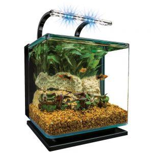 marineland contour glass aquarium kit