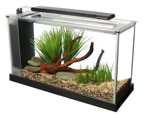 fluval spec v aquarium kit m