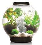 biorb classic aquarium s