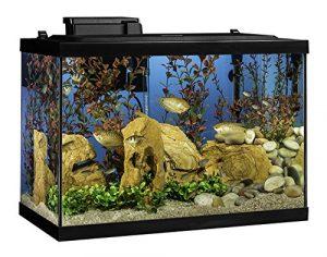 tetra 20 gallon aquarium kit m
