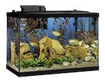 tetra 20 gallon aquarium kit s