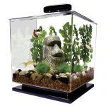 tetra cube aquarium 3 gallon