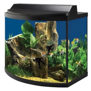 aqueon 36 gallon deluxe aquarium kit