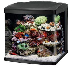 coralife fish tank led biocube aquarium starter kits