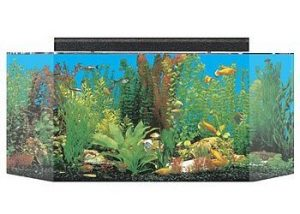 seaclear 26 gallon flat back hexagon acrylic aquarium combo set