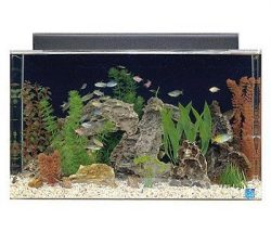 seaclear 29 gallon show acrylic aquarium combo set