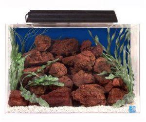 seaclear rectangular aquarium combo
