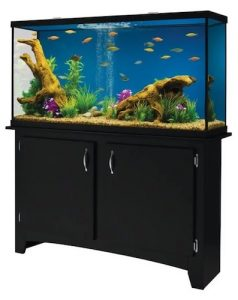 marineland 60 gallon heartland led aquarium with stand