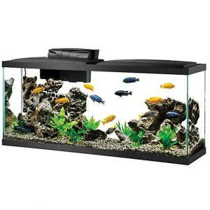 aqueon standard glass aquarium tank 55 gallon